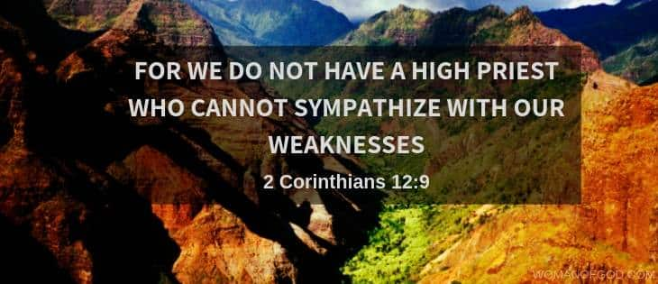 Hebrews 4:15 verse