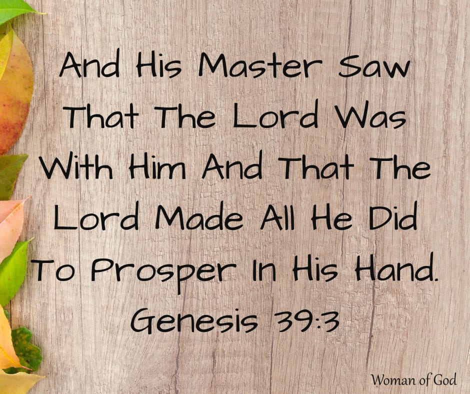 Genesis 39:3 Bible Verse
