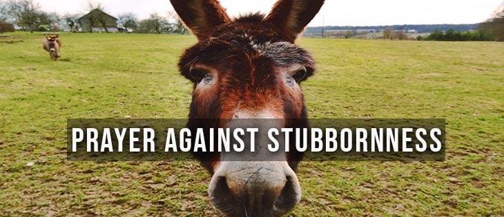 prayer against stubbornness featured