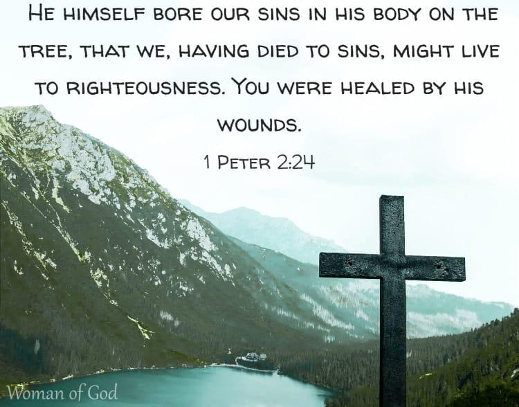 1 Peter 2:24 Bible Verse