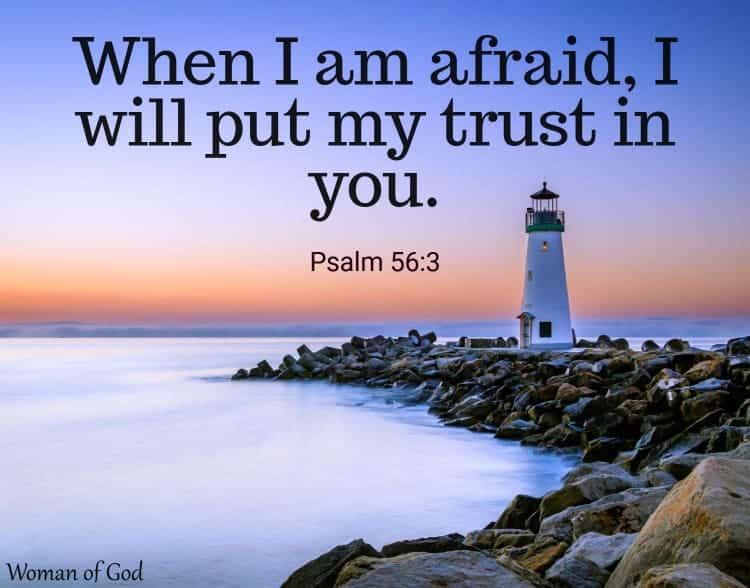 Psalm 56:3 Bible Verse
