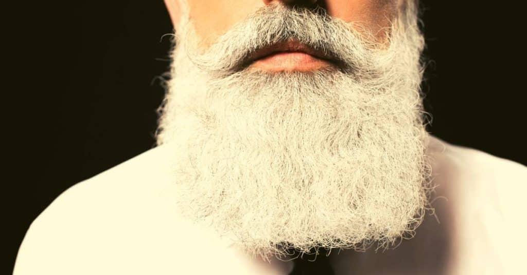 bible verses about beards